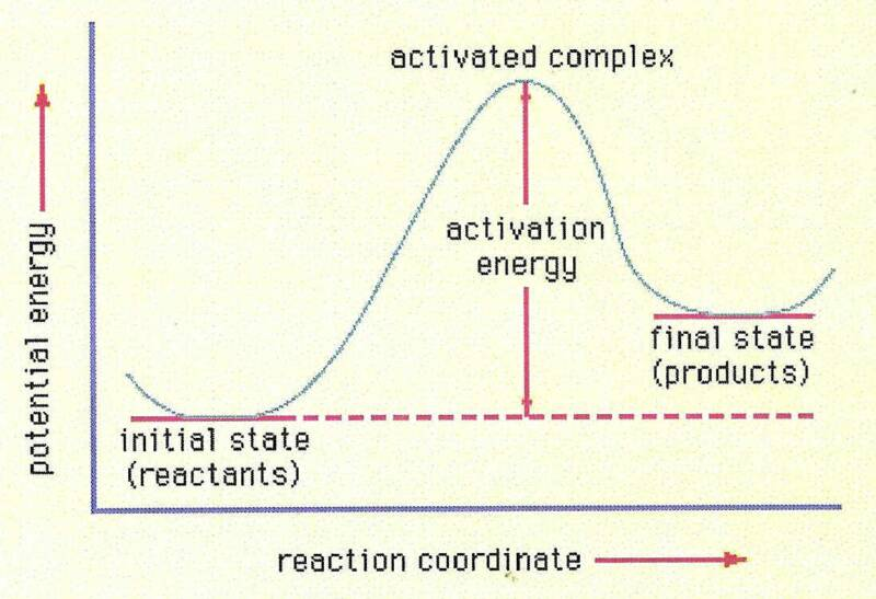 Human Thermodynamics :: Glossary